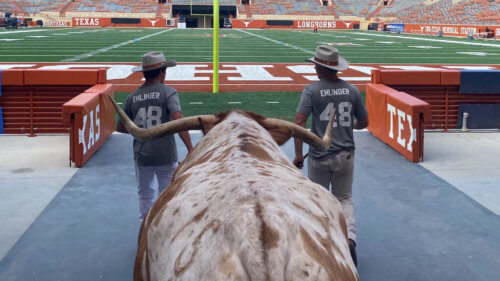Football is back! It's been a long time since we've attended any Texas football games. Here's your tailgate guide from BEVO XV himself!